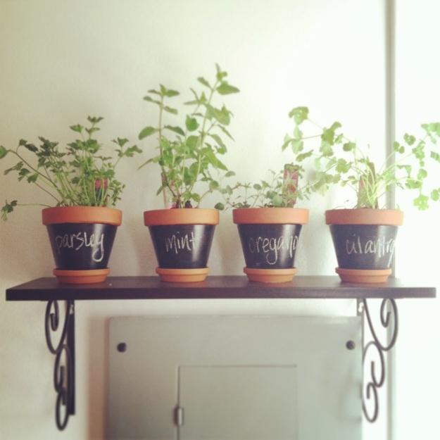 Herbs7